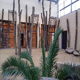 InnenbereichElefantenhaus